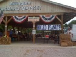 Farmers' Market in Millington, TN